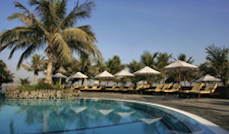 Palm Tree CourtJebel Ali Dubai pool palm tree and sun loungers