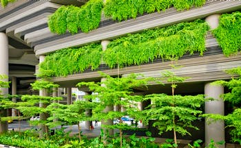 Architecture filled with green plants in Singapore