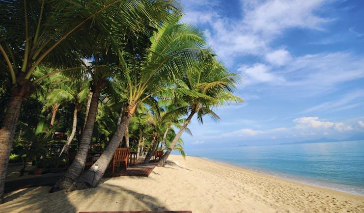 Santiburi Resort Thailand beach white sand sea palm trees