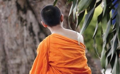 The Dhara Devi Thailand monk with shaved head and bright orange robes