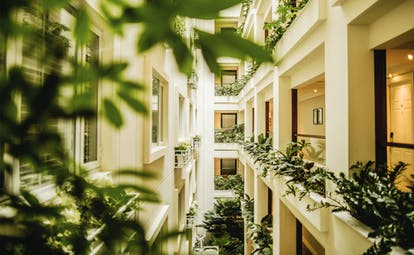 Apricot Hotel corridor, plants growing, bright green foliage, elegant decor