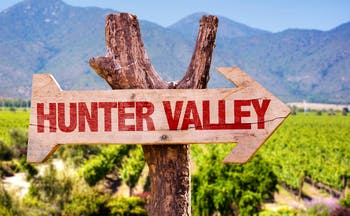 Hunter Valley sign, vineyards in background
