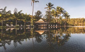 Orpheus Island pool, sun loungers, poolside bar, palm trees