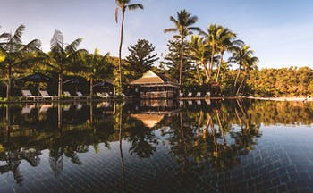Orpheus Island pool, sun loungers, poolside bar, palm trees