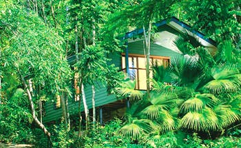 Silky Oaks Lodge Queensland exterior wooden lodge on stilts among trees