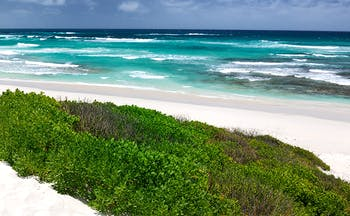 White sand beach with surf and turquoise sea