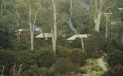 Cradle Mountain Lodge Tasmania cabin complex of wood cabins surrounded by trees