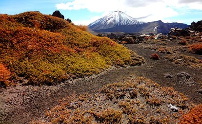 Mount Ngauruhoe in North Island snow capped mountain in background, rugged landscape