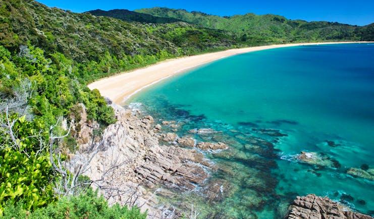 Abel Tasman National Park coastline, white sandy beach, bright blue ocean, verdant green forest