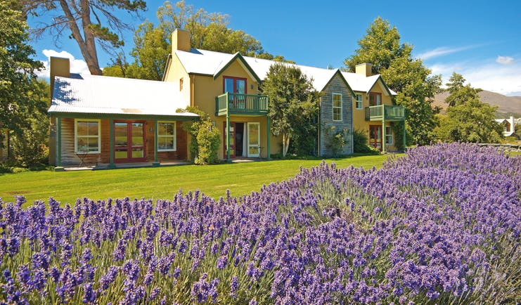 Millbrook Lodge Otago and Fiordland exterior lavender building with gardens and lavender