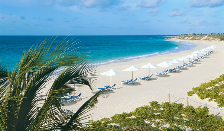 Cuisinart Anguilla beach with palm tree and umbrellas