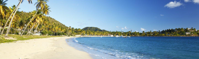 Morris Bay Beach in Antigua, sand, blue ocean , palm trees