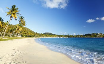 Morris Bay Beach in Antigua, sand, blue ocean , palm trees