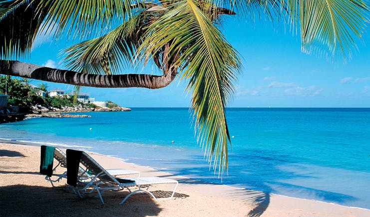 Blue Waters Antigua beach palm tree and sun loungers