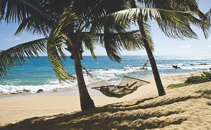 Curtain Bluff Antigua hammock and palm trees on the beach