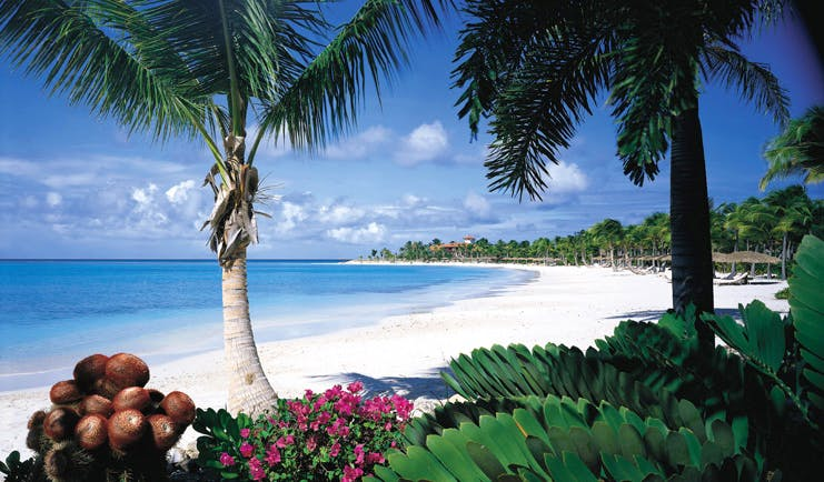Jumby Bay Antigua beach white sand clear blue ocean palm trees