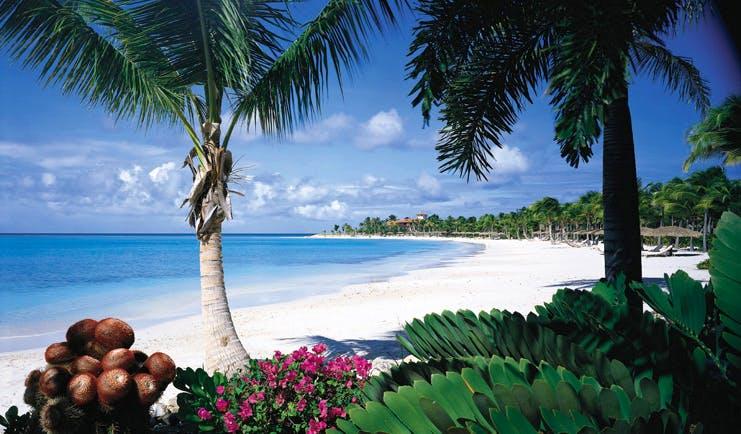 Jumby Bay Antigua beach white sand clear blue ocean palm trees