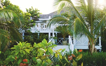 Kamalame Cay Bahamas exterior shot building surrounded by palm trees and greenery