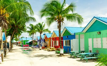 Colourful houses in Barbados palm trees