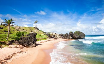 Beach in Bathsheba, Barbados, sand, sea, ocean, palm trees
