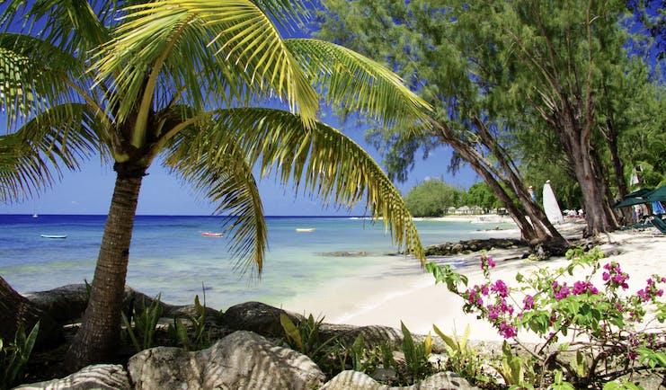 Coral Reef Club Barbados beach white sand ocean palm tree
