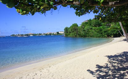 Beach in the Caribbean at the Calabash