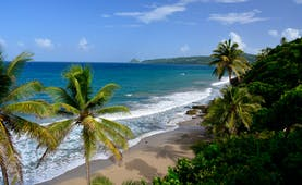Grand Anse beach in Grenada, sand, blue seas, palm tree