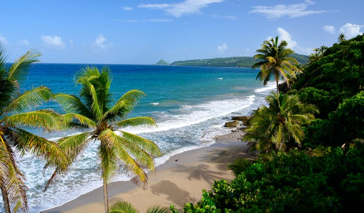 Grand Anse beach in Grenada, sand, blue seas, palm tree