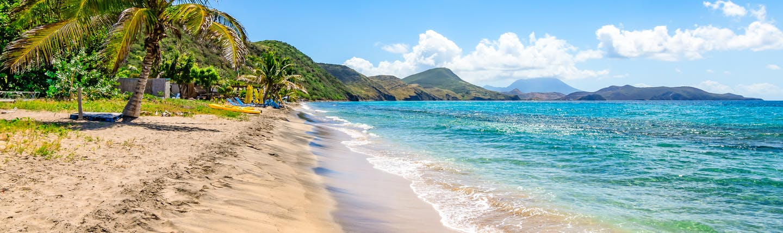 Beach in Saint Kitts, golden sand, turquoise sea, palm trees