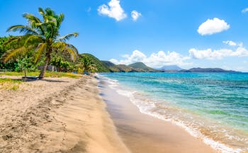 Beach in Saint Kitts, golden sand, turquoise sea, palm trees