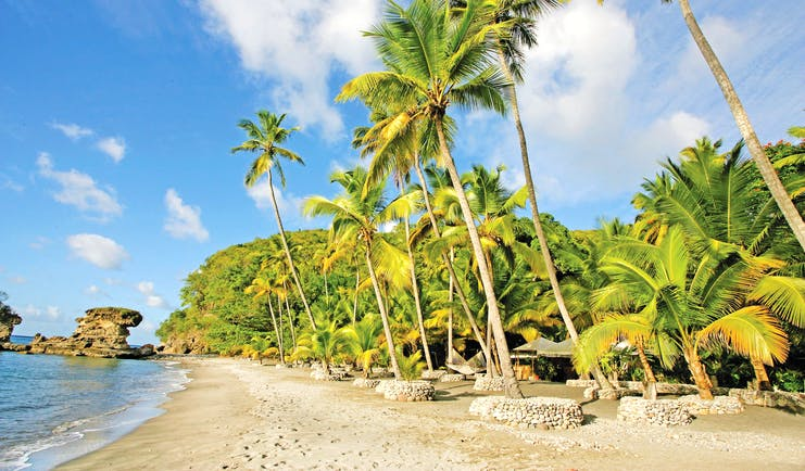 Anse Chastanet St Lucia beach and palm trees