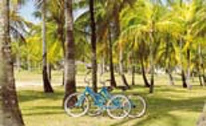 Palm Island St Vincent and the Grenadines bicycles in the garden