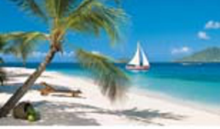 St Vincent and the Grenadines beach and palm tree boat on water