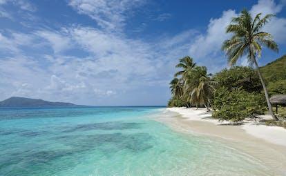 Petit St Vincent sea clear blue ocean white sandy beach palm trees