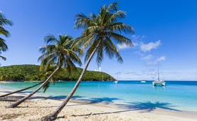 Beach on the Grenadines, white sand, blue seas, palm tree