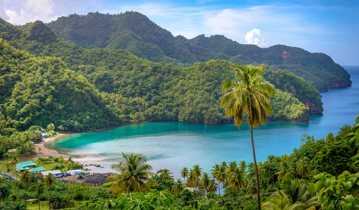 A bay in Saint Vincent and the Grenadines, palm trees, rainforest, ocean