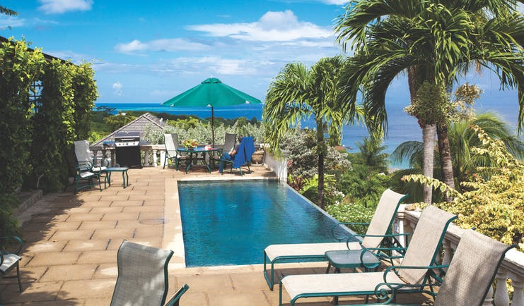 The Villas at Stonehaven Tobago villa infinity pool sun loungers ocean views palm trees