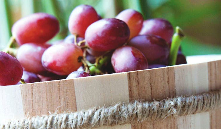 Red grapes in wooden tub