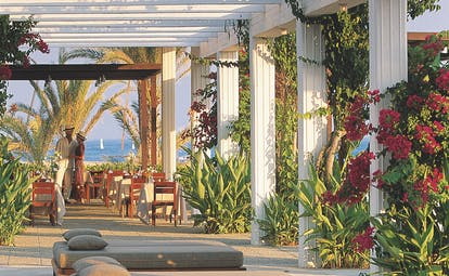 Sunbeds laid out outside underneath a veranda with plants growing up the sides and dining tables in the distance