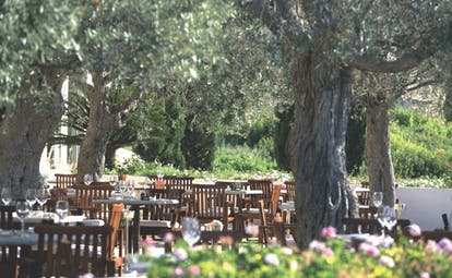 Anassa Hotel outdoor dining area with wooden chairs and tables set up beneath trees