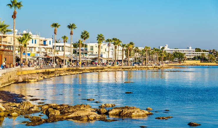 Paphos harbour in Cyprus, sea, beach , palm trees