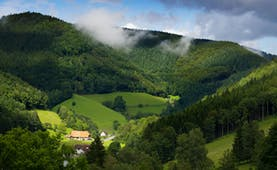 Green fields and hills with low cloud of the Black Forest