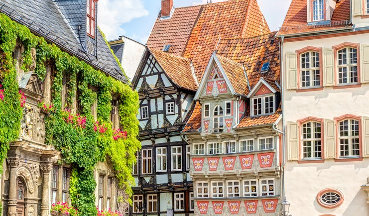 Timber houses some covered in greenery in Quedlinburg old town