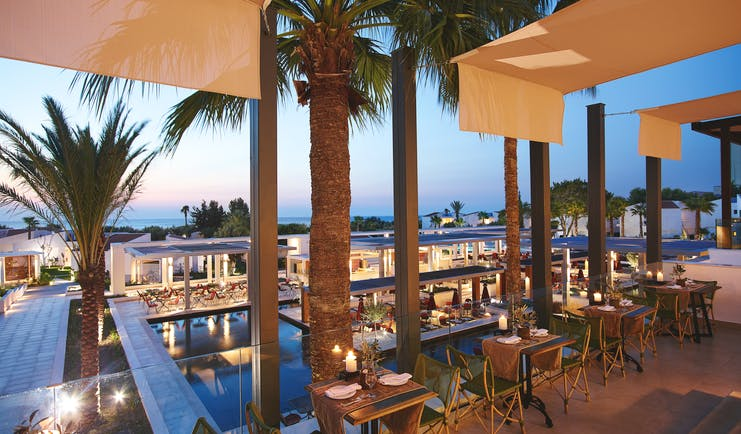 Evening shot of restaurant with palms overlooking the pool