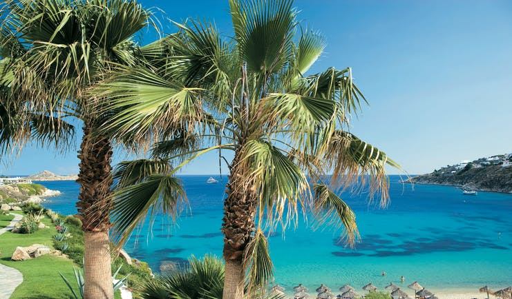 Mykonos Blu Greece Grecotel beach lawned area with palm tree overlooking beach with sun loungers and umbrellas