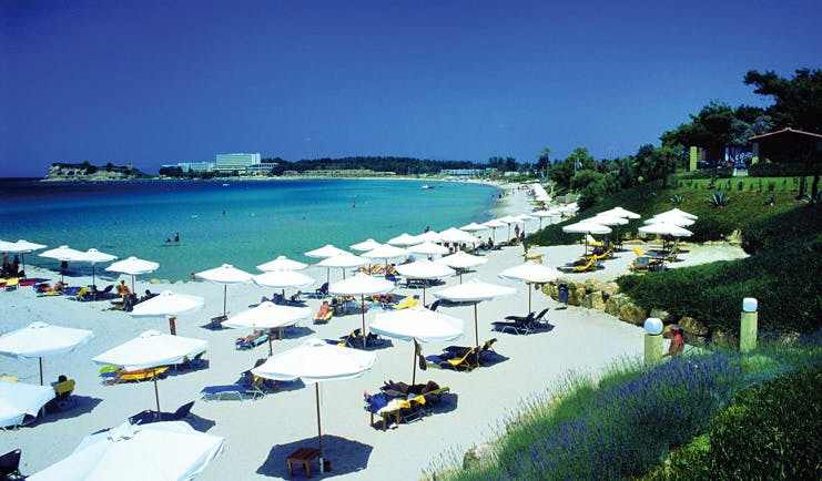 Sani Club Greece beach loungers umbrellas white sand gardens