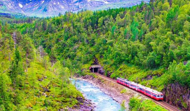 Red train in valley by river with trees on hills and mountains behind Oslo to Bergen train
