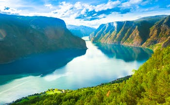 Wide and long fjord with tree clad sides Sognefjord