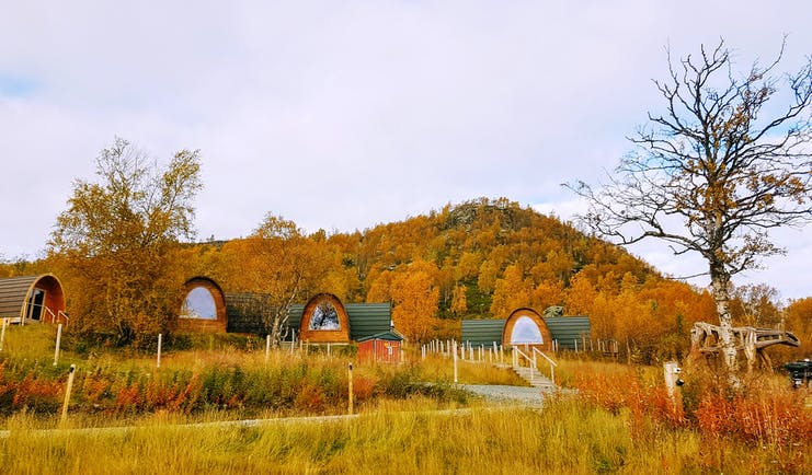 Snowhotel Kirkenes wooden cabins in yellow and orange autumn scenery