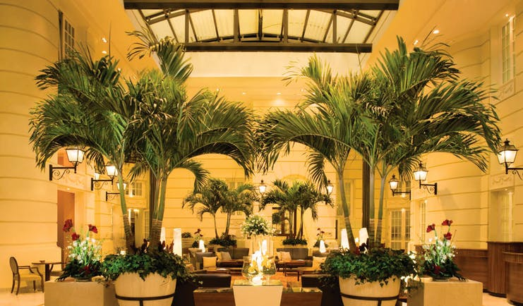 Polonia Palace Hotel grand hotel lobby with large palm trees in the centre, a high ceiling and chairs scattered around